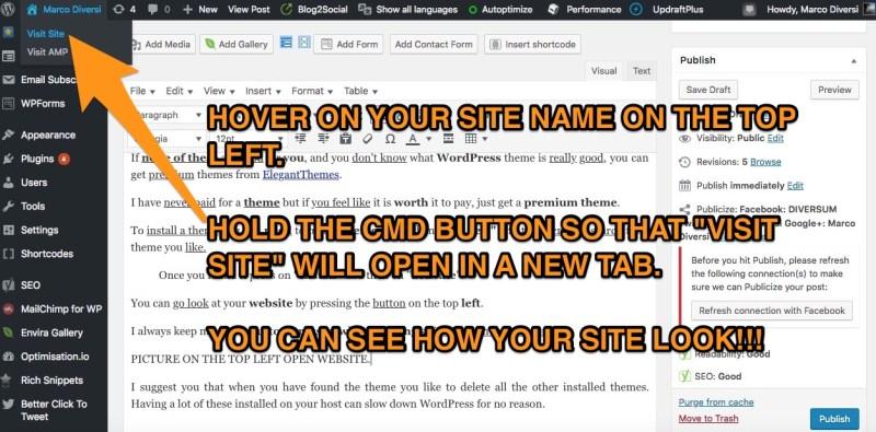wordpress vedi il tuo sito