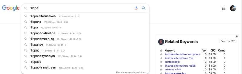 flippa google instant results