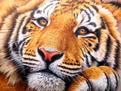 Acrylic on canvas, 24x32 in (60x80 cm), 2021