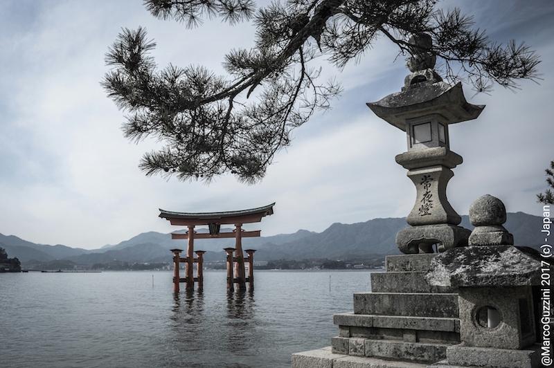 giappone torii templi fotografia : voglio andare in giappone