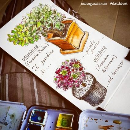 disegnare dal vero illustrazioni di piante