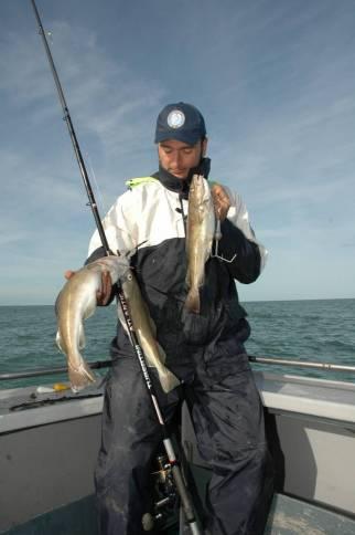 La pesca nei mari del nord al merluzzo (cod) necessita di particolari terminali che evitano torsioni dovute alle fortii correnti
