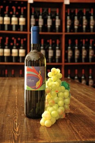 Pinot Grigio Aura il Pupillo Scarlino Gr.