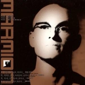 CD-Single-Marmion-Spark-Flame-Fire-Remix 1996