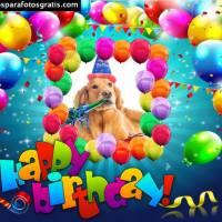 Marcos de feliz cumpleaños, los mejores y más coloridos modelos