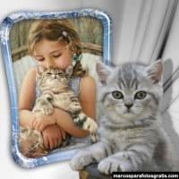 Marcos de fotos con gatitos tiernos para colocar tu foto