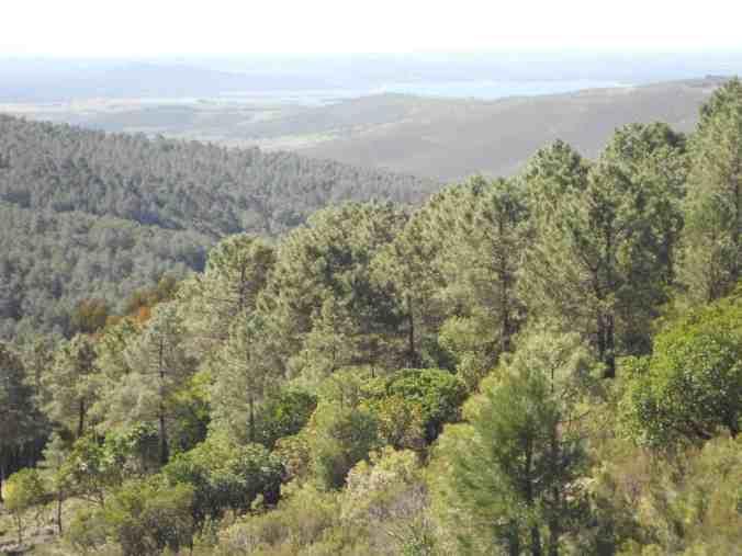 Pantano-Gabriel-y-Galán-Cáceres_Marcosplanet