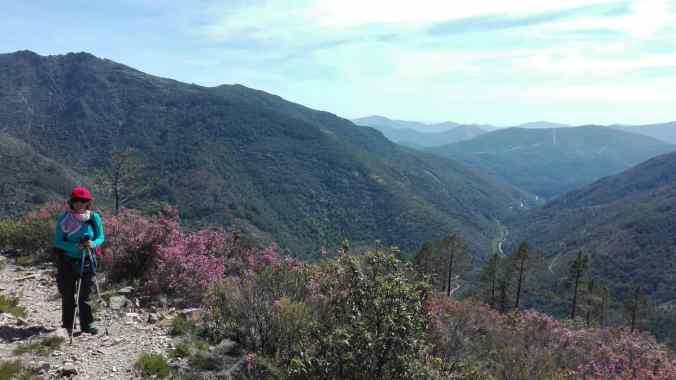 Sierra_de_Francia