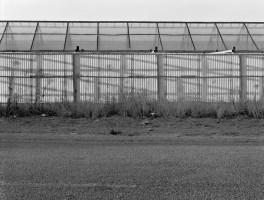 Greenhouse Shadow