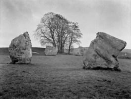 Avebury Dolmans & Tree