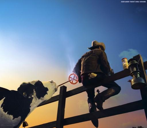 Vaca rabuda