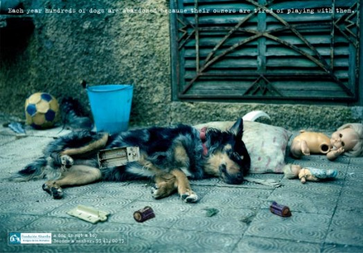 A dog is not a toy - photo 2