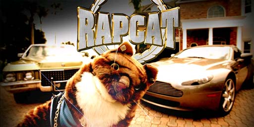 Rapcat