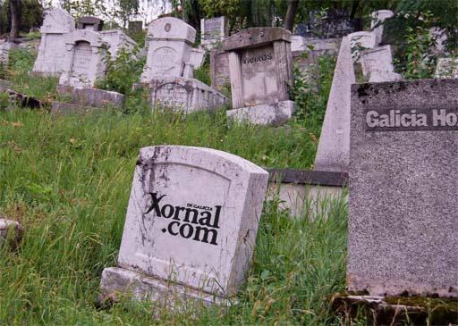 Camposanto dos medios galegos