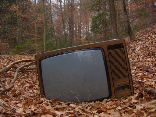 Adeus á vella televisión