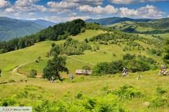 Tour Rumänien Sibiu