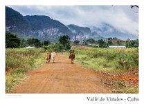 vinales_kuba_95