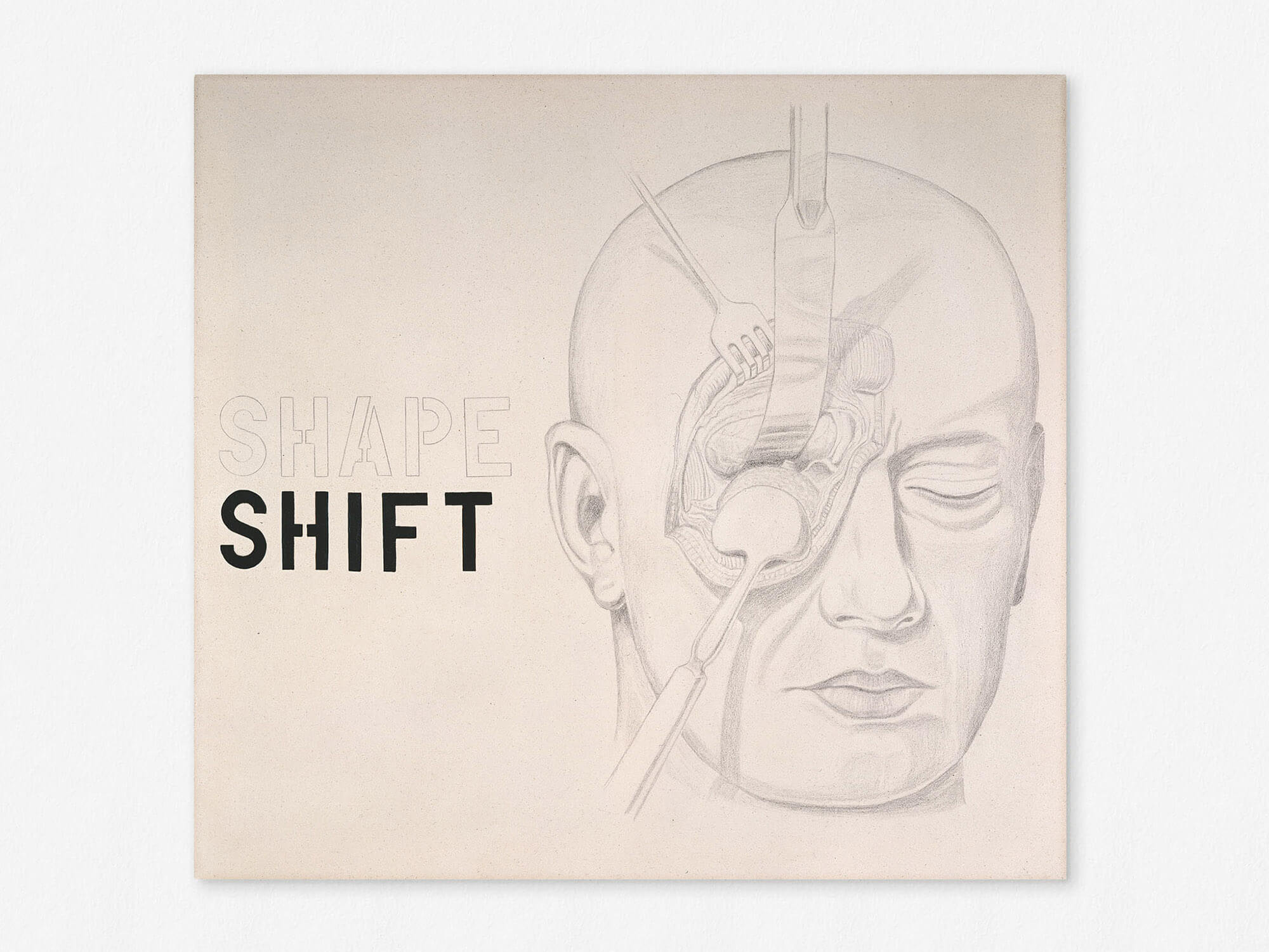 Marcus Kleinfeld, SHAPE / SHIFT, 2009 Oil and pencil on canvas 100 x 110 cm