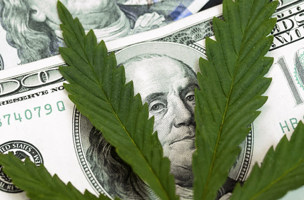cannabis investment due diligence