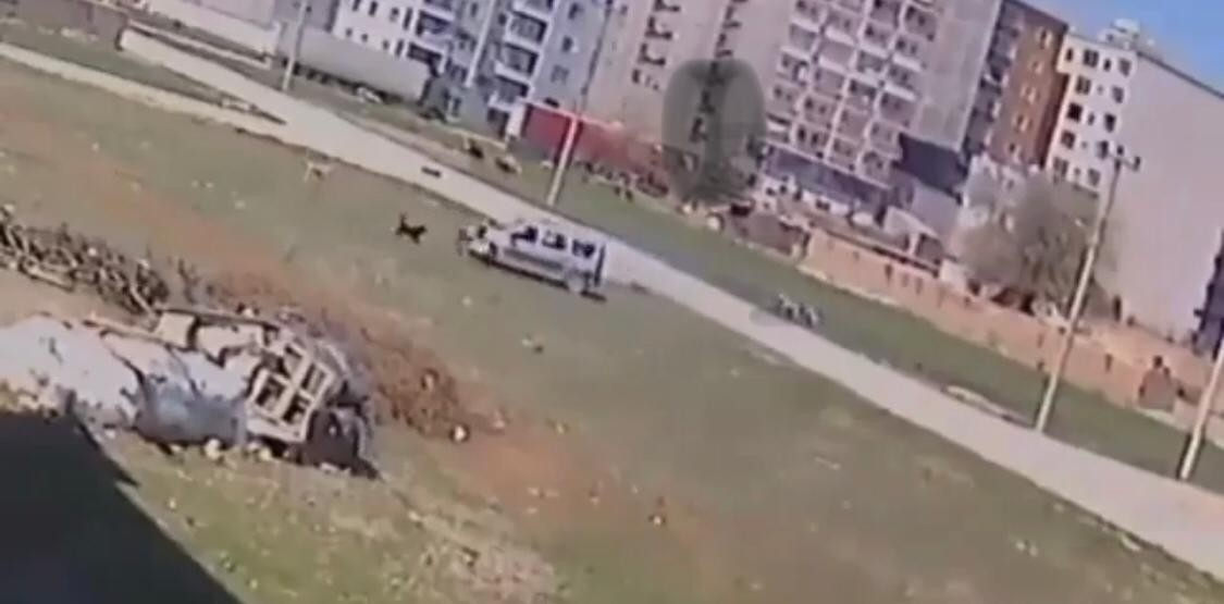 Sokak köpeklerinin çocuğa saldırma anı kameralara yansıdı