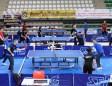 Masa Tenisi 1. Ligi 2. etap  maçları Mardin'de başladı