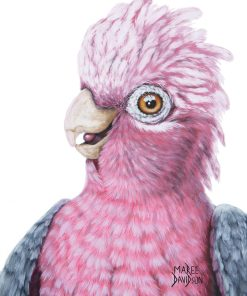 DIXIE THE GALAH-FRAMED MATTED PRINTS-MAREE DAVIDSON