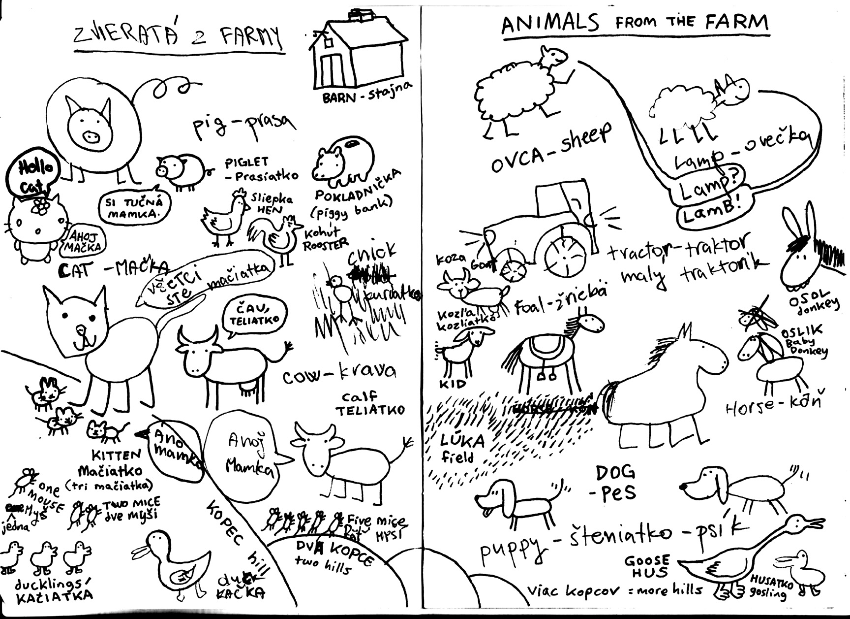 Jungle Animals English Worksheet