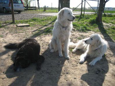 Meikel mit Antonella und Luna