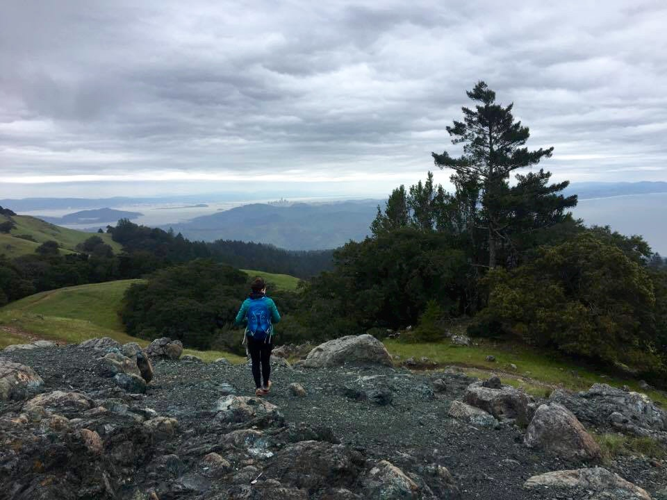From the top of Mount Tam!