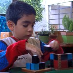 montessori newsletter