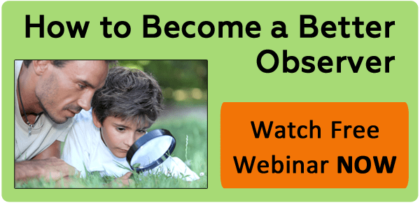 How To Become A Better Observer