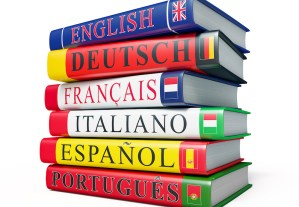 Questions about Multilingual Children