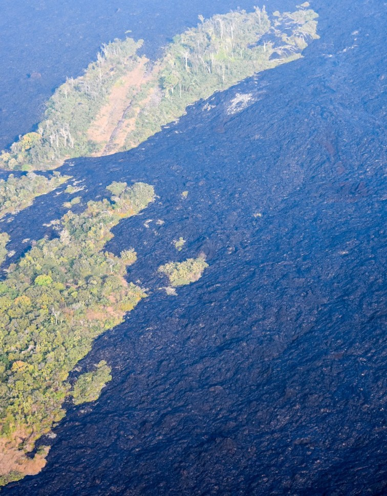 Hawaii Lava Rock and Rainforest