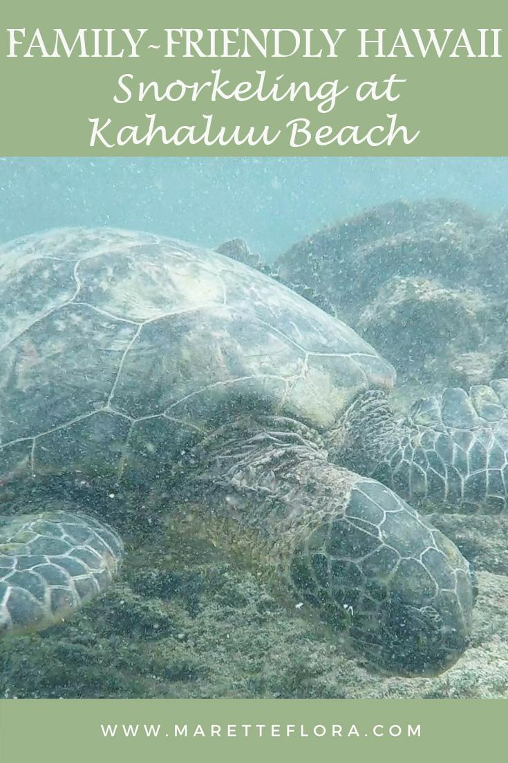 Family-Friendly Snorkeling at Kahaluu Beach Park