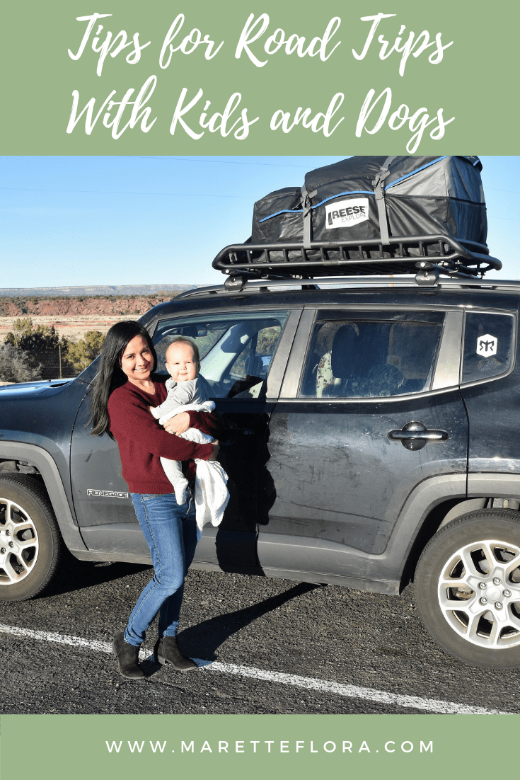 road trip tips with kids and dogs