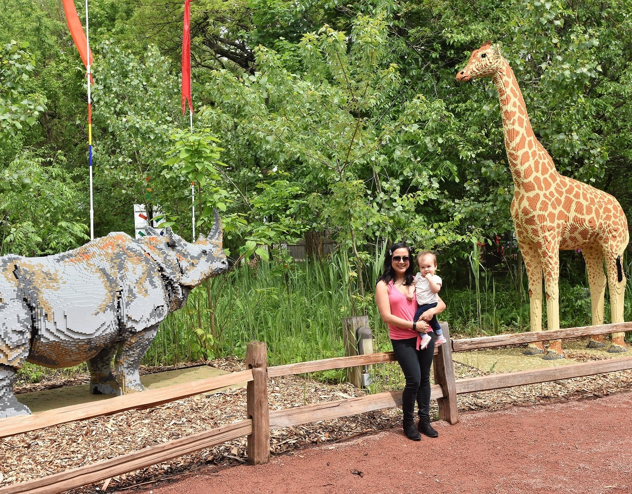 Checking out the Brick Safari at Brookfield Zoo
