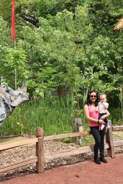 Brick Safari Brookfield Zoo