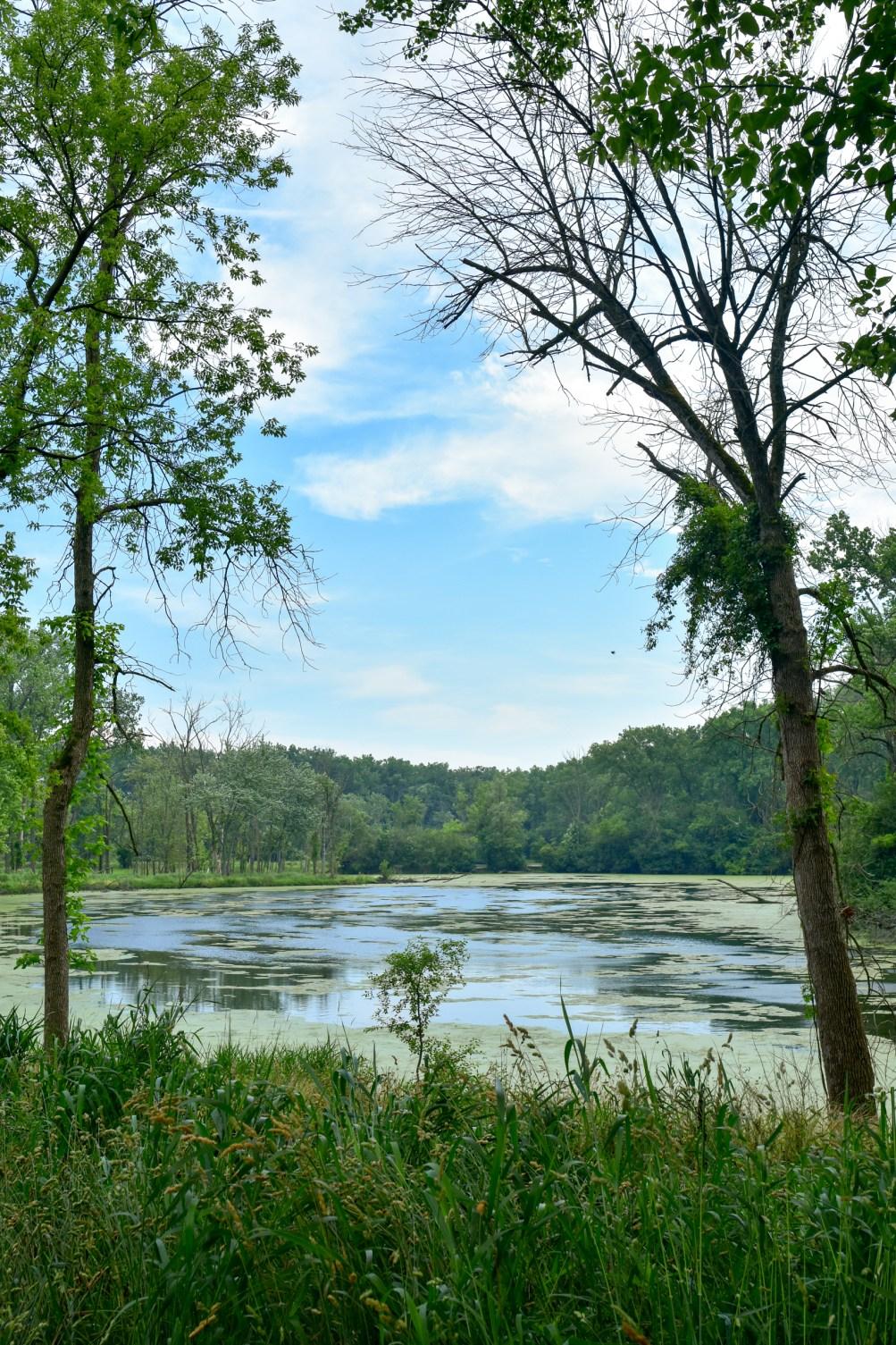 Skokie Lagoons Illinois