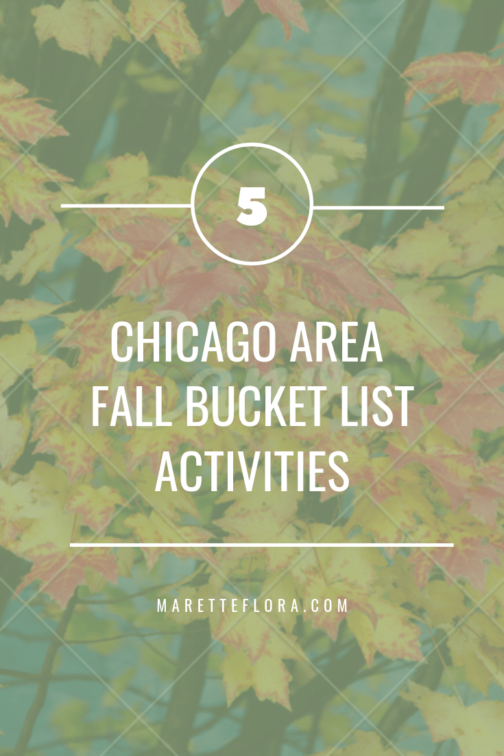 Chicago area fall bucket list