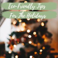 Eco-Friendly Holiday Tips