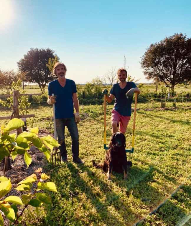 Xavier Mounier cultive un champ en permaculture sur l'île de Ré