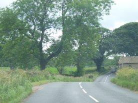 The road near Rylstone.
