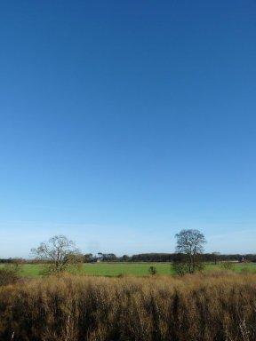 Blue sky January