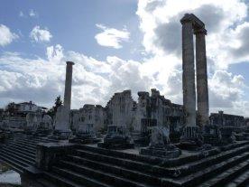 Some of Didyma's columns.