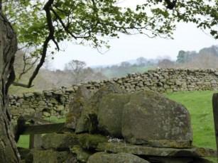 Walls near Horsehouse.