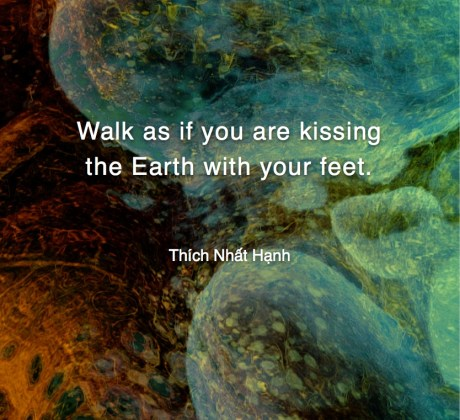 Walk as if you are kissing - Thích Nhat Hạnh #MotivationalQuote #Inspirational Quote #ThichNhatHanh #LifeQuotes #wordstoliveby #PositiveQuotes #mindfulness #meditation