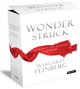 WonderStruck_ProductShot small