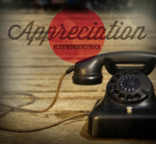 21 Days of Wonder APPRECIATION