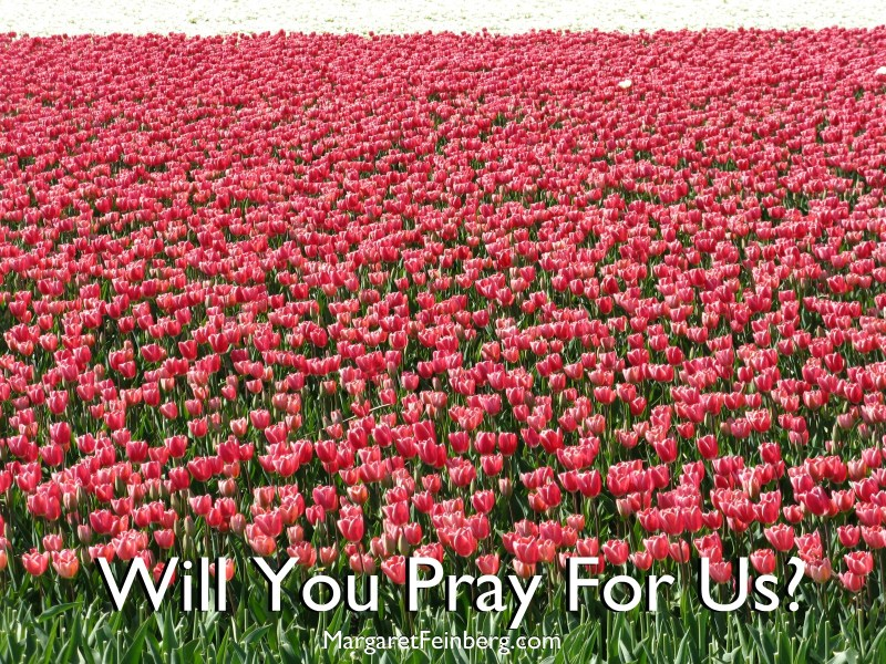 From the Desk Of Leif: Will You Pray For Us?