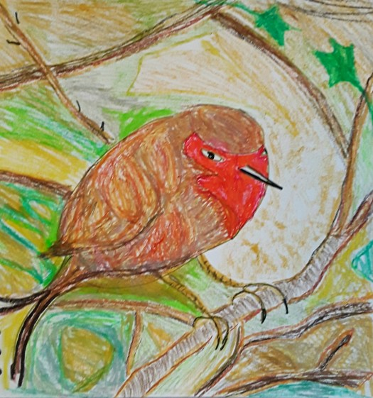 A Christmas robin,  drawn in oil pastel,  perching on a little branch in a thorn tree.
